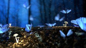 Blue Butterflies on tree
